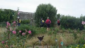 jardin du phare de l'ile Wrac'h